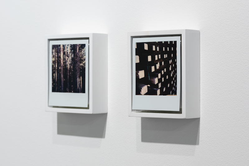 Land | Reland [Portland]  Installation view.  Courtesy of the artist and Upfor Gallery. Photography by Mario Gallucci.