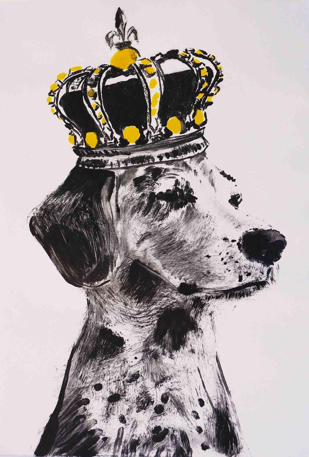 'El Rey (Geriatric Beagle)', 16'' x 20'', 2018.jpg