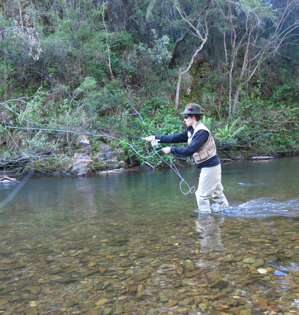 Fly fishing in action.jpg