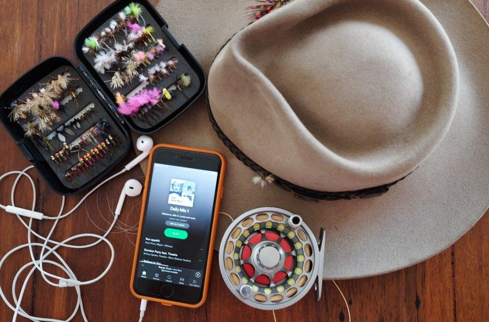 fly music pic.jpg