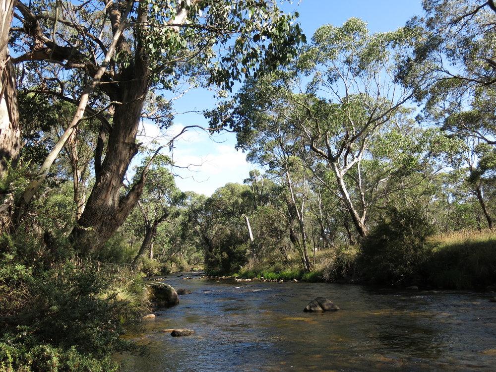A river somewhere…