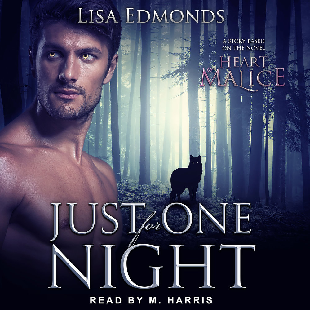 Coming in April 2019 from Amazon, Audible, and iTunes - The Just For One Night audiobook!