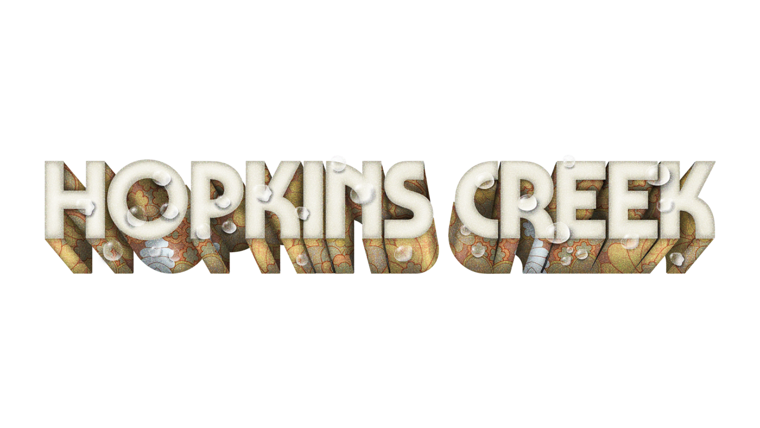 Hopkins Creek 2018
