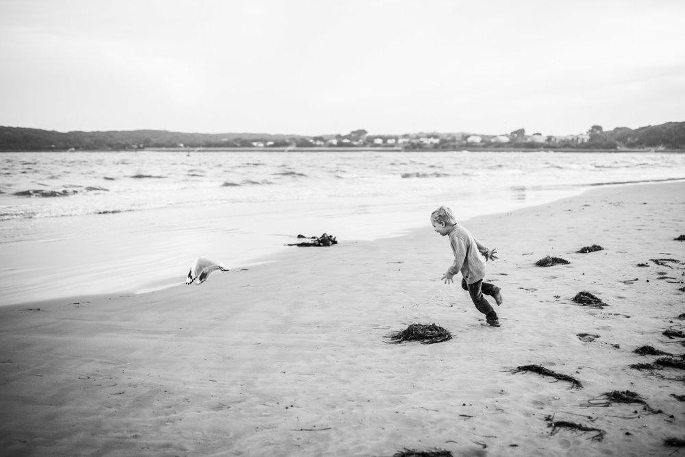 little-boy-chsing-seagull (1 of 1).jpg