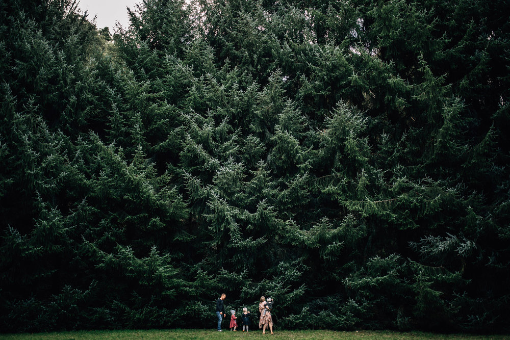 family-standing-in-front-of-tall-forrest-trees (1 of 1).jpg