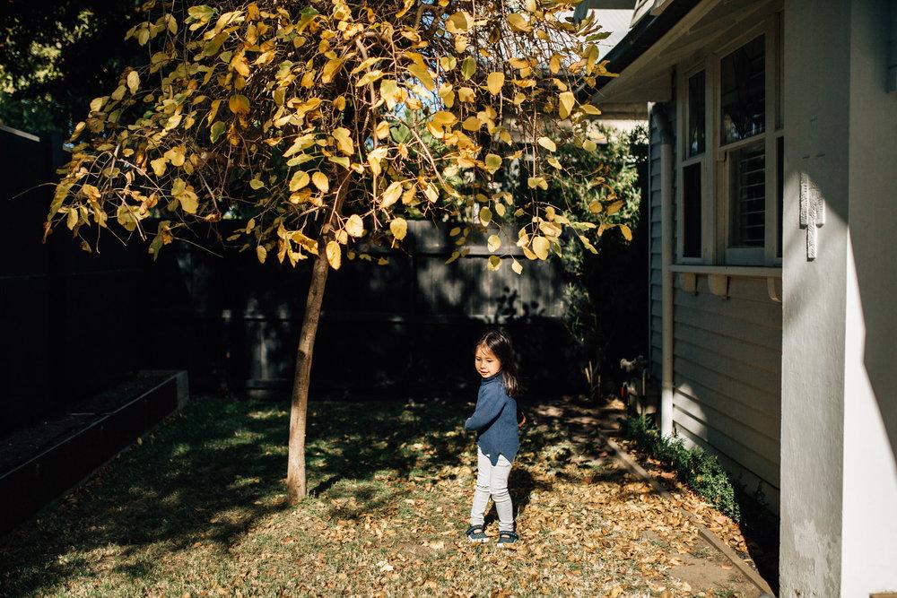 little-girl-looking-dancing-beneath-mulburry-tree (1 of 1).jpg