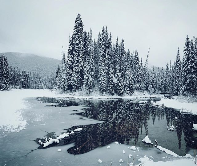 Canada, it took me a long time to visit you. First time's a charm. . . . . #canada#lake#winter#wonderland#reflection#landscape#landscapephotography#greatoutdoors#getoutside#lowseason#bestseason#nature#naturephotography#forest#woodland