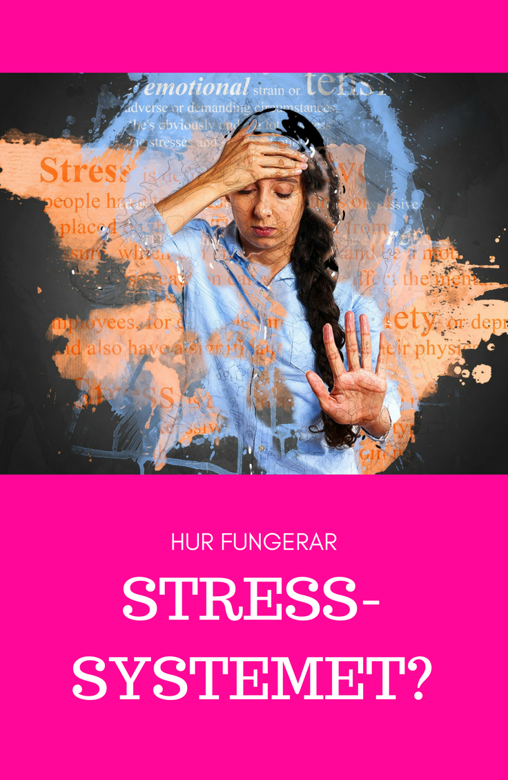 STRESS-SYSTEMET.png