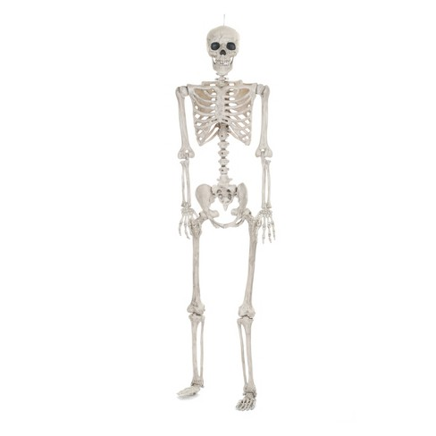 Lifesize Posable Halloween Skeleton