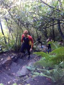 Uphill march for a consistent HR in the beautiful NZ forest