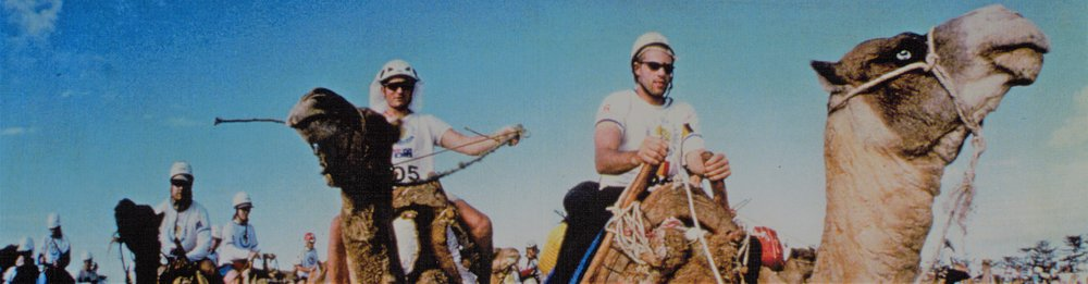 camels, Eco-Challenge 1998, Morocco
