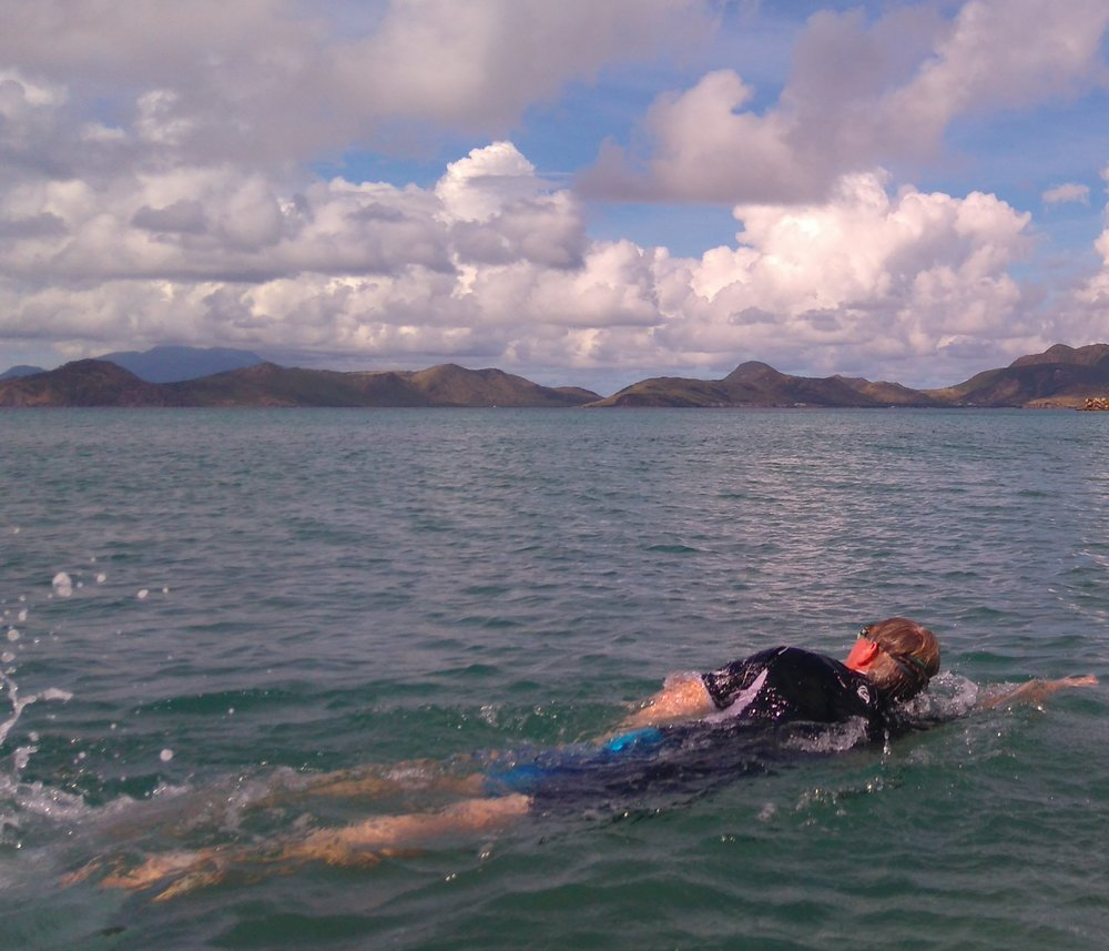 link image Nevis swim comp.jpg