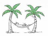 Man in a Palm Tree (2).jpg