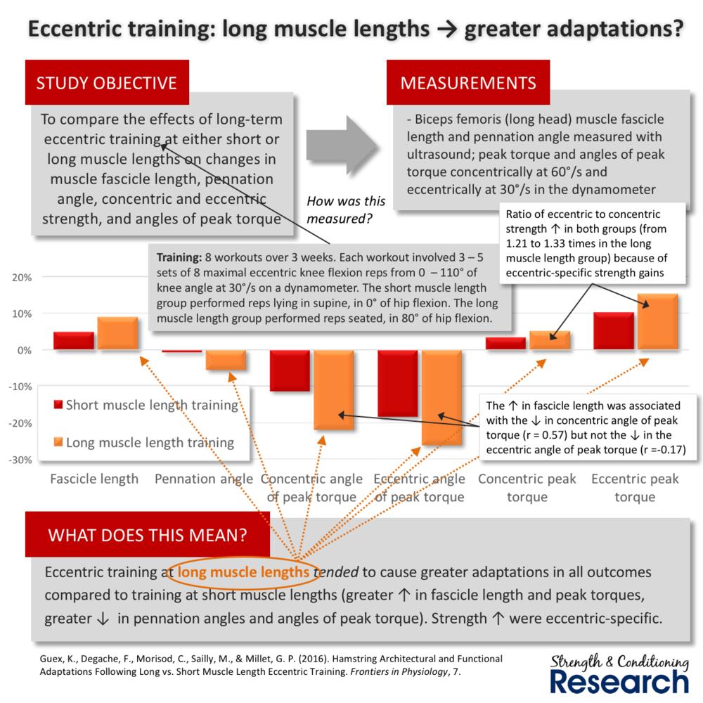 Eccentric Long-vs.-short-training.png