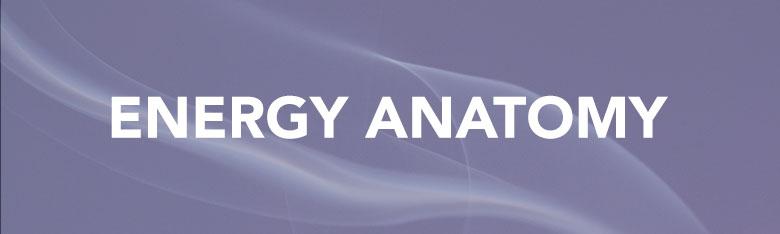 EnergyAnatomySeries.jpg