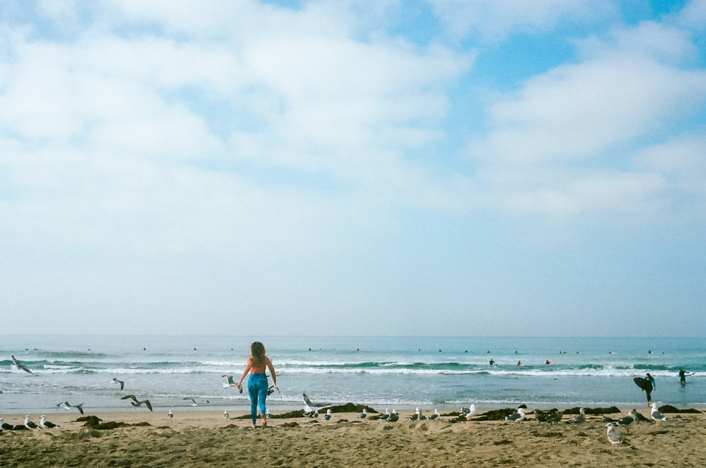 35mm color film Surfing photo shoot at Huntington State Beach with girl surfer chasing seagulls for Get wise fool eco-friendly surf company