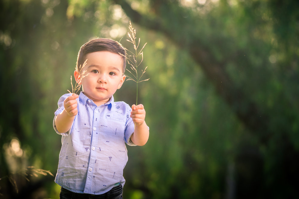 little boy portrait during a Family portrait photo shoot in Fullerton on the Juanita Cooke Hiking Trail with green trees and grass and the golden hour sun