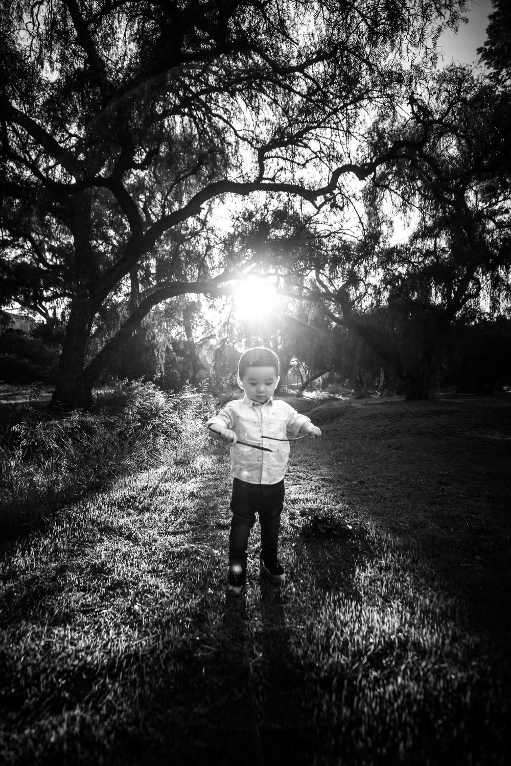 black and white Candid portrait of a little boy playingduring a Family portrait photo shoot in Fullerton on the Juanita Cooke Hiking Trail with green trees and grass and the golden hour sun