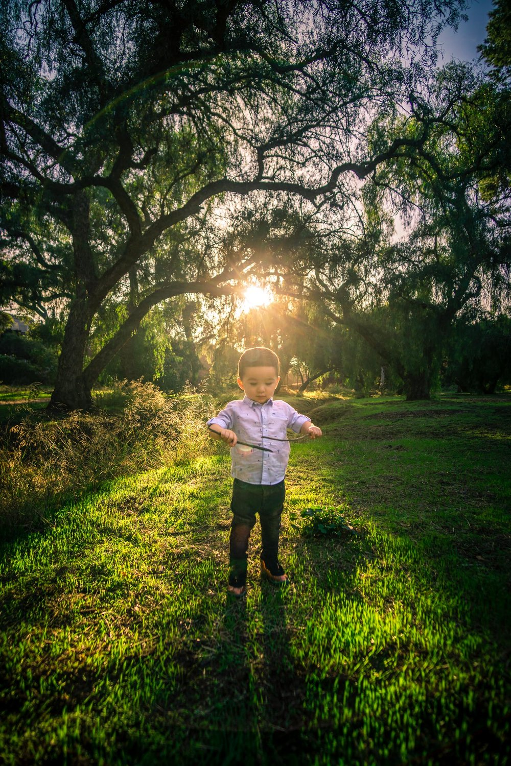 Candid portrait of a little boy playing during a Family portrait photo shoot in Fullerton on the Juanita Cooke Hiking Trail with green trees and grass and the golden hour sun