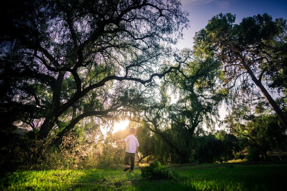 wide angle Candid photo of a little boy playingduring a Family portrait photo shoot in Fullerton on the Juanita Cooke Hiking Trail with green trees and grass and the golden hour sun