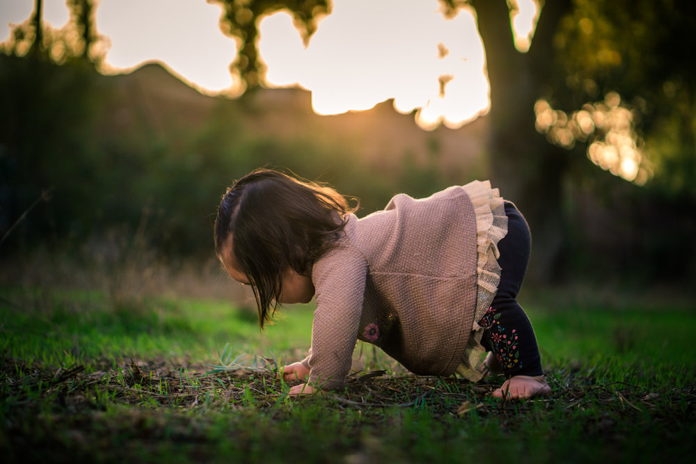 Portrait of a cute Little baby girl playingin the grass on the Juanita Cooke Trail in Fullerton during a family portrait session