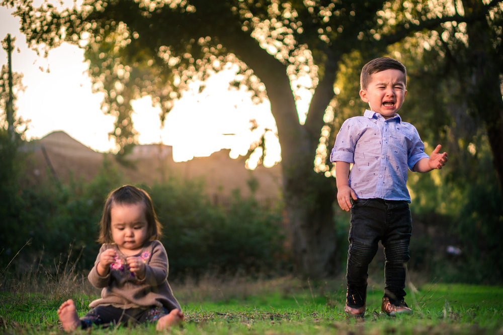 Portrait of a cute Little baby girl playingin the grass with her brother crying during a family portrait session in fullerton orange county