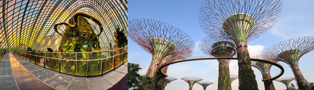 Be mesmerised by Gardens by the Bay, home to over 200 exotic plants. Enjoy exploring the Flower Dome and Cloud Forest and experience the Sky Walk in the Super Trees, which tower up to 50 meters high and support over 163,000 plants
