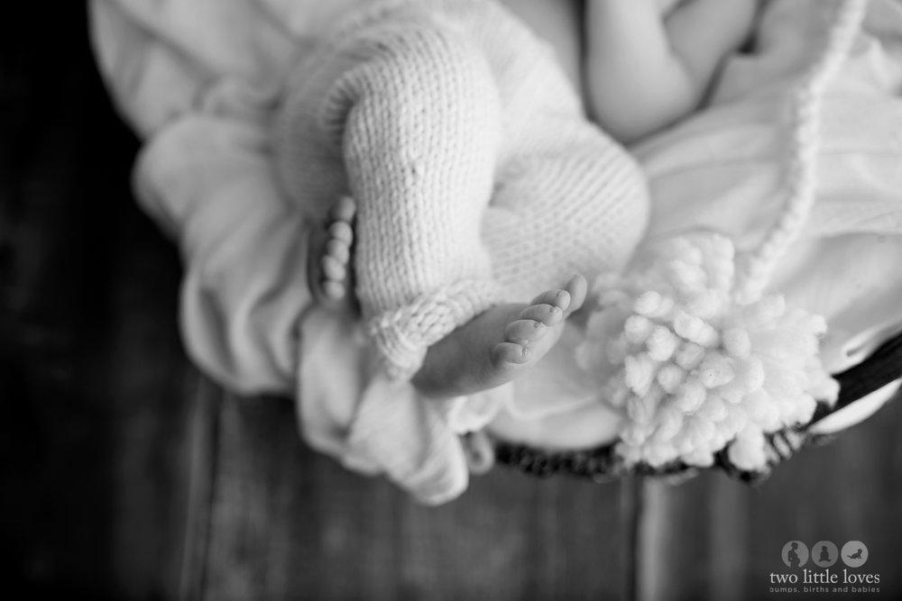 Warner Robins Newborn Photographer