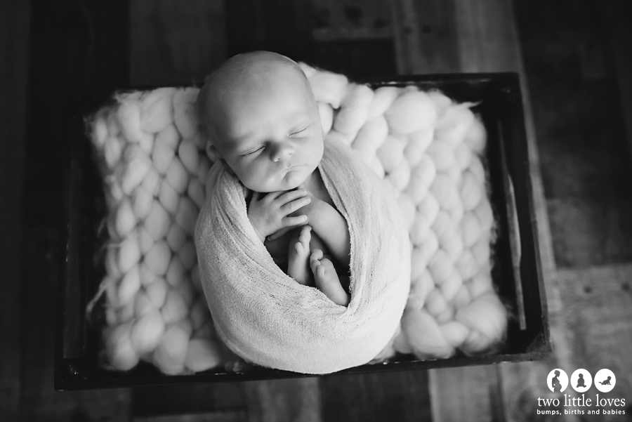 Newborn_Photographer_Warner_Robins_Newborn_Studio1 (1).jpg