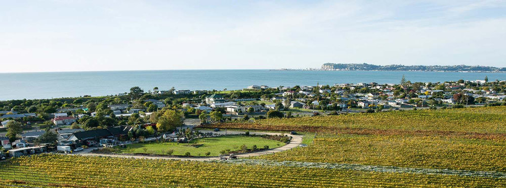 Aerial view of Crab Farm winery
