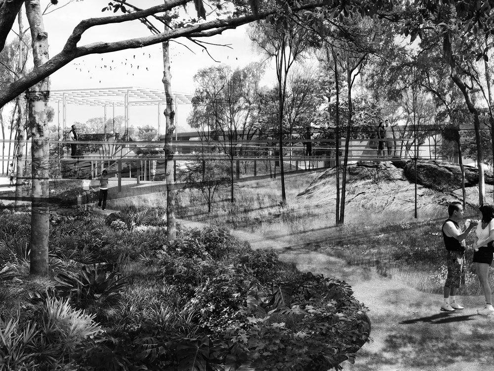 ParkTopoPlanting - BW.jpg