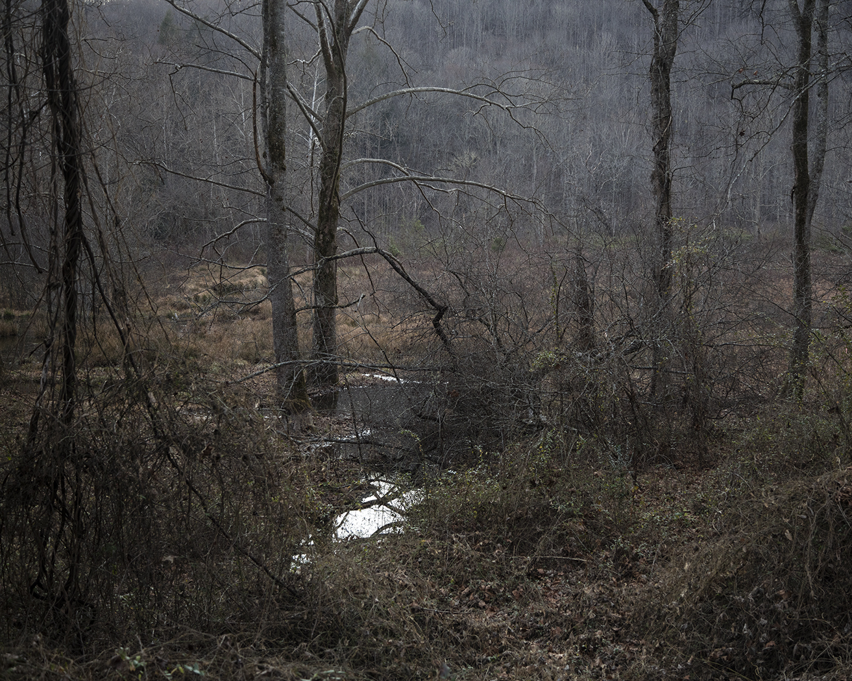 Untitled - Lowlands, Rabun, GA (SO)