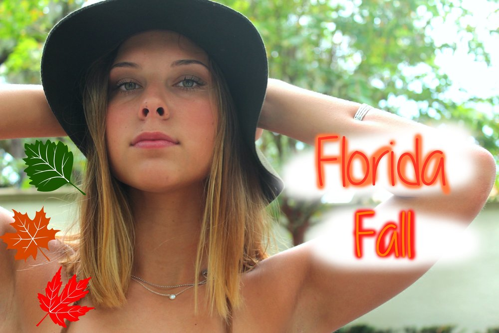 florida-fall.jpg