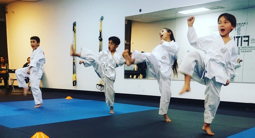 Youth Martial Arts & Mentorship  - Our curriculum builds the foundation of student's morals, values, and core character in their early years of childhood development. Our motto is