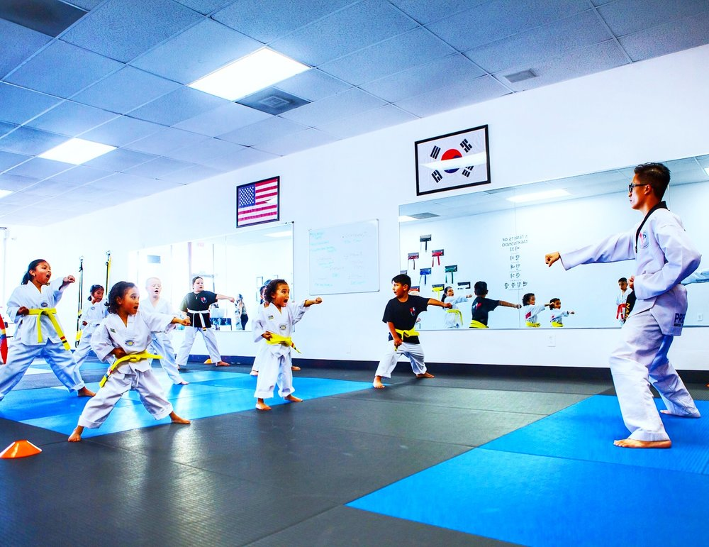 YOUTH TAEKWONDO (AGES 7-12) - Our curriculum builds the foundation of student's morals, values, and core character in their early years of childhood development.Our motto is