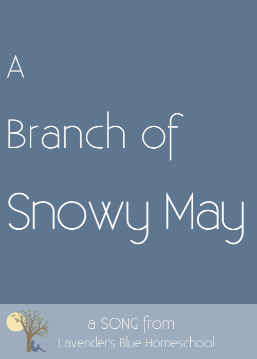 Blog Image -  ABranchofSnowyMay.png
