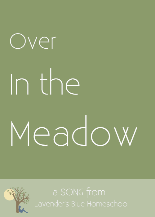 Blog Image -  OverintheMeadow.png