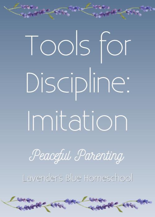 Blog Image-ToolsforDisciplineImitation.png