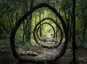 nature circles.jpg