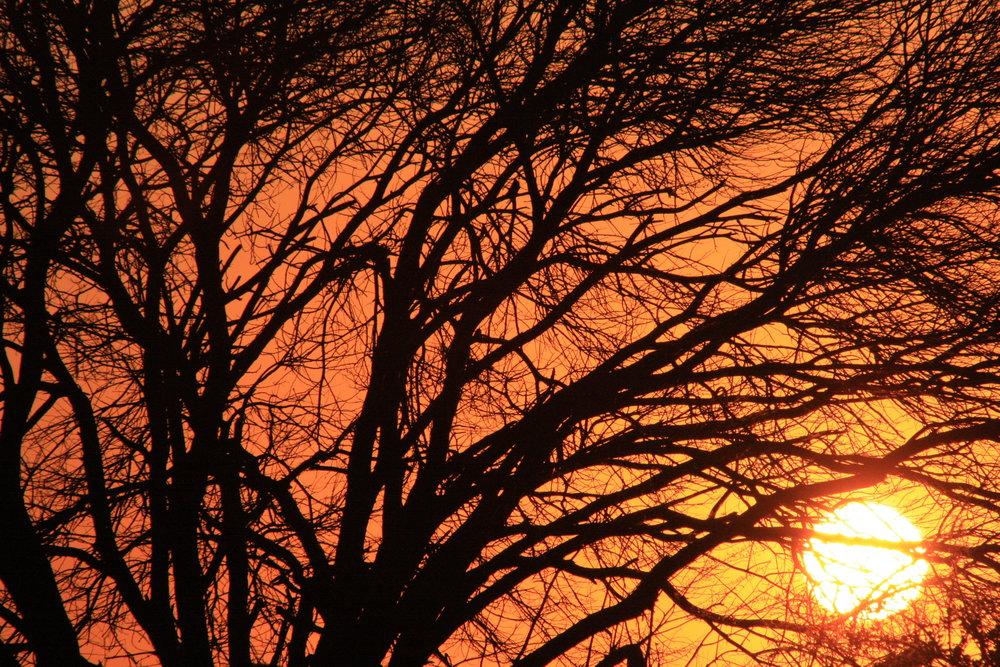 Africa Sunset 2.JPG