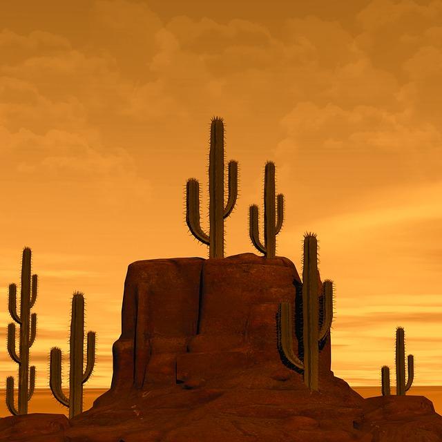 desert-2751810_640.jpg
