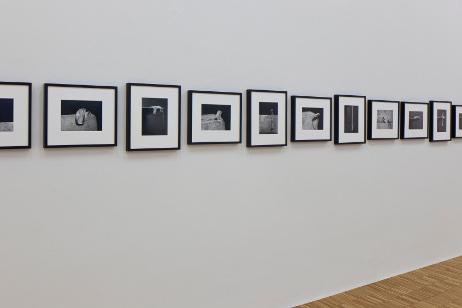 Alina Szapocznikow,  Fotorzeźby [Photosculptures] , 1971/2007.