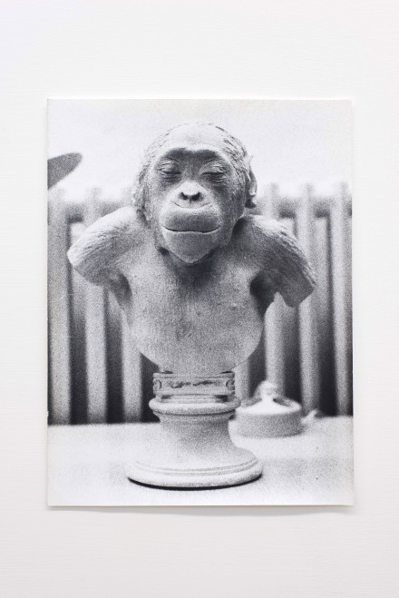 Jochen Lempert,  Untitled,  2005.