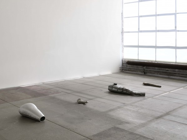 Antoine Nessi,  Unknown Organs , 2014.