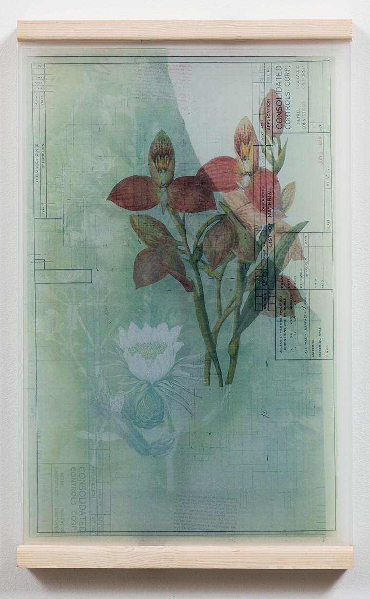 Melanie Smith,  Collage 21,  2014