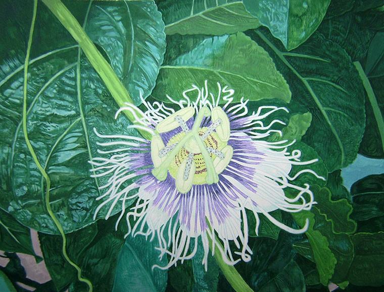 Walter Sutin,  Tree House Passion Flower,  2016.