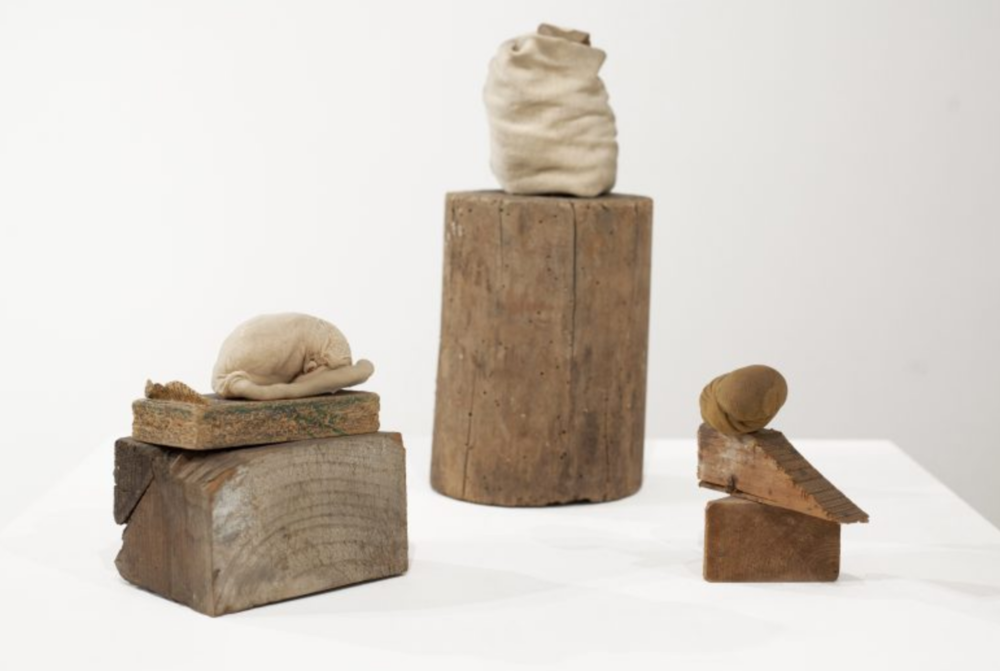 Luisa Gardini,  Untitled , 2015