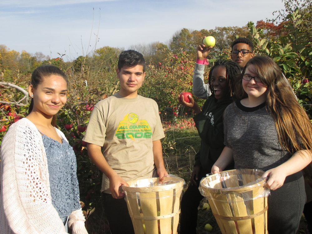 ENVIRONMENTAL CLUB - APPLE PICKING