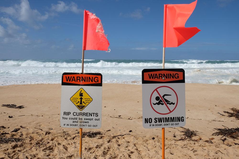 hawaii-has-my-heart-33.jpg
