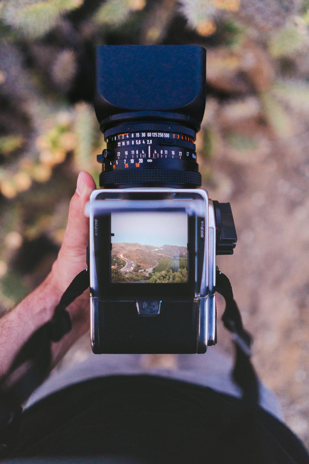 Film Photography - Analog for life